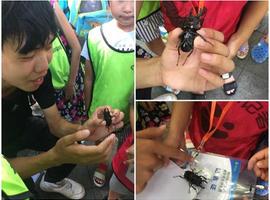 暑期职业体验营第17场 小小生物学家