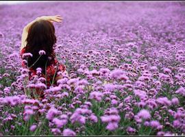 浪漫粉裙赏花大会——致我们的18岁